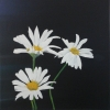 Painting - marguerite 3