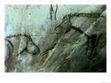 Horses, Rock Paintings in the Black Room, Magdalenian - Paleolithic