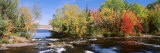 Trees Near a River, Bog River, New York State, USA - Panoramic Images