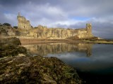 St. Andrews Castle, Palace of the Bishops of St. Andrews, St. Andrews, Fife, Scotland, UK - Patrick Dieudonne