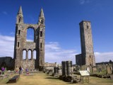 St. Andrews Cathedral Dating from the 14th Century, St. Andrews, Fife, Scotland, UK - Patrick Dieudonne