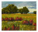 Afternoon Fields 1 - Patty Baker