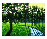 Long Green Shadows II - Patty Baker