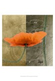 Orange Poppies VI - Patty Q.