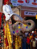 Man Riding Decorated Elephant in Street Parade of Annual Elephant Festival, Jaipur, India - Paul Beinssen