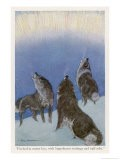 The Song of the Huskies: Howling Under the Aurora Borealis - Paul Bransom