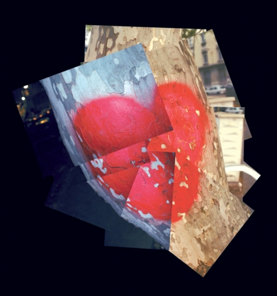 PHOTO  - A coeur ouvert