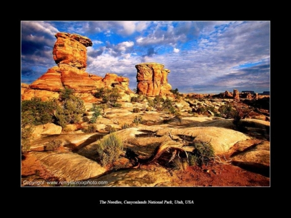 PHOTO Canyonlands The Needles Utah USA Paysages  - The Needles, Canyonlands National Park