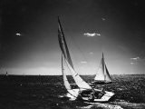 Sailboats under Way During the Riverside Yacht Race - Sam Shere