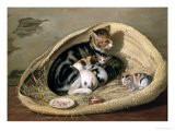 Cat with Her Kittens in a Basket, 1797 - Samuel de Wilde