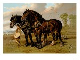 Clydesdale Stallion and Mare - Samuel Sidney