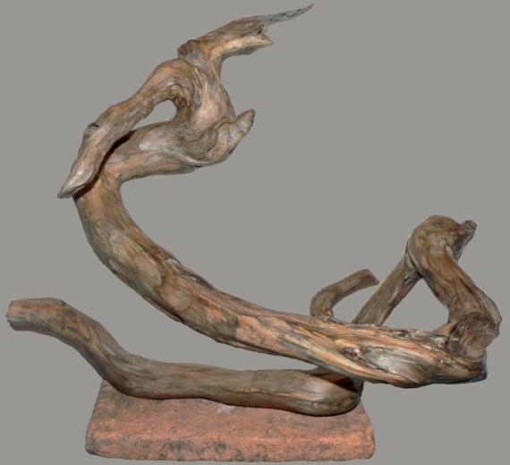 SCULPTURE Bois flotté sculpture naturelle mythologie tianlong ...