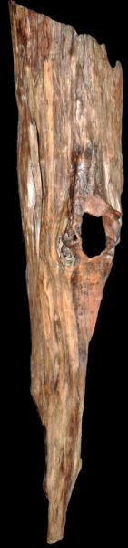 Applique Murale Bois Flotte : naturelle applique murale bois flott? LIGER Abstrait Bois – Le cri