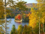 Summer Home Surrounded by Fall Colors, Wyman Lake, Maine, USA - Steve Terrill