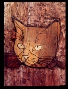 tableau animaux : (An.2010)cats