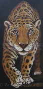 "tableau animaux animaux jaguar grand felin fauve : ""SWEET"""