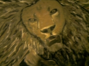 tableau animaux animaux : Lion