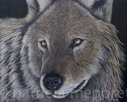 "tableau animaux animaux loup animal foret : "" WOLF"""