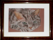 tableau animaux art animalier chat pastel : tendre regard