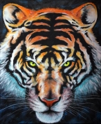 tableau animaux asie felin animal tiger : Face au tigre Tableau original