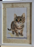 tableau animaux chat chaton animaux pastel : Chaton aux yeux verts