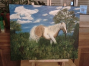 tableau animaux cheval poney animal : Moka