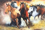 tableau animaux chevaux galop mustang liberte : Les mustangs