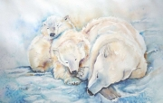 tableau animaux ours blanc aquarelle ours aquarelle animaux animal sauvage : Ours polaire