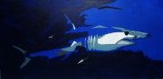 tableau animaux : Requin Mako