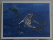 tableau animaux : requin