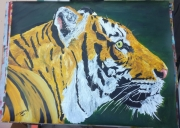 tableau animaux tigre animal animaux felins : Tigre