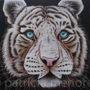 "tableau animaux tigre animaux fauve grand felin : "" CYAN """