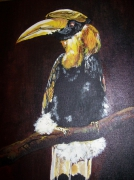 tableau animaux : toucan