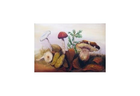 Tableau peinture champignons couleur d 39 automne for Peinture a lhuile couleur argent
