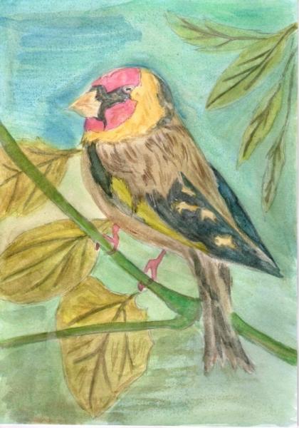 Dessiner un tableau peinture - Dessiner un oiseau ...