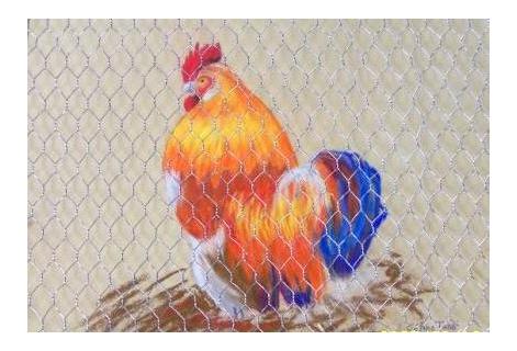Tableau peinture coq poulaillier animaux jaune coq au poulailler - Jaune pastel peinture ...