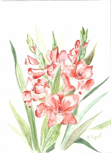 Top TABLEAU PEINTURE fleurs bouquet printemps fraicheur - Glaïeuls QC82