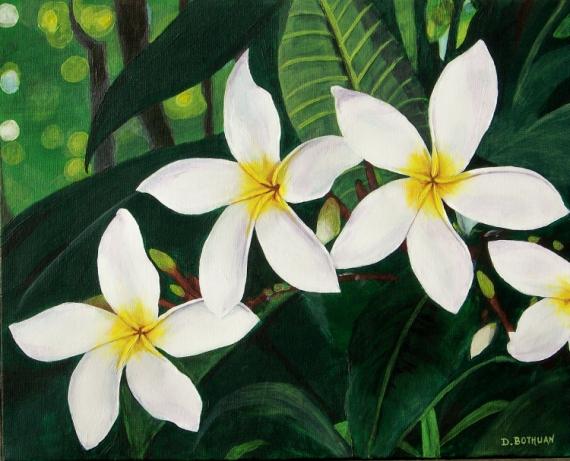 Favorit TABLEAU PEINTURE fleurs exotique tahiti antilles - Frangipanier blanc OC16