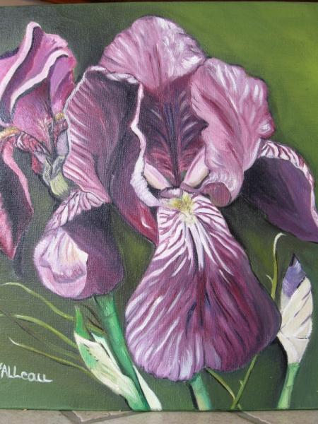 tableau peinture lys mauves