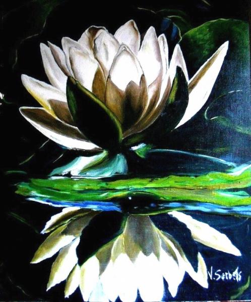 Tableau peinture nenuphar fleur reflet etang n nuphar - Nenuphar dessin ...