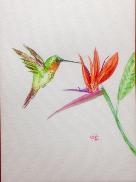 tableau peinture oiseau fleur nature multicolore colibri et l 39 oiseau de paradis. Black Bedroom Furniture Sets. Home Design Ideas