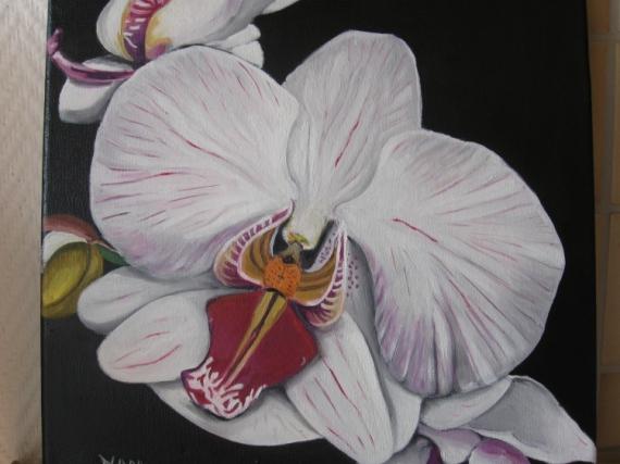 Fleur d 39 orchid e noir et blanc id e d 39 image de fleur - Dessin d orchidee ...