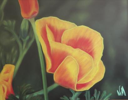 Tableau peinture pastel sec cosmos orange cosmos - Peinture au pastel sec ...