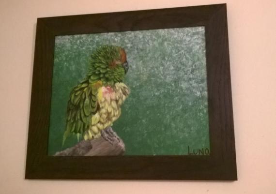 tableau peinture perroquet vert trompe l 39 oeil acrylique perroquet. Black Bedroom Furniture Sets. Home Design Ideas