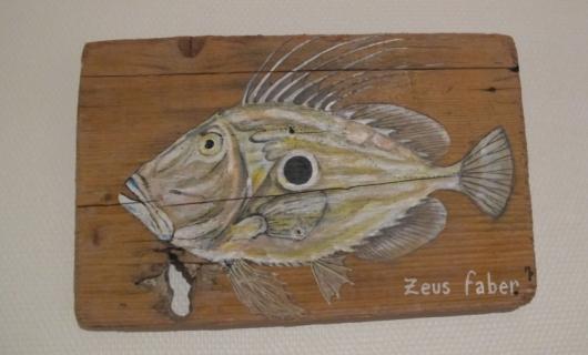 Tableau peinture poisson saint pierre d co poissons for Peinture sur bois flotte
