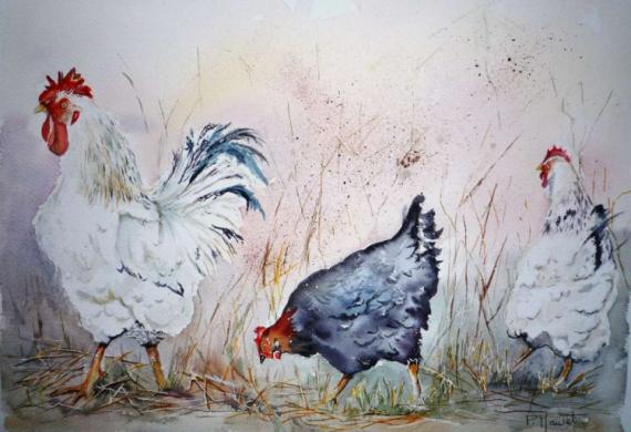 Bien-aimé TABLEAU PEINTURE Poule Coq Basse-cour Volailles - Escapade IB47