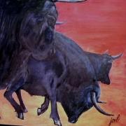 Le taureau en général  dans VACHE - BOEUF.... f5b176d4023da4630a72c7120af43532taureaux