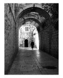 Holy Alley - Tal Naveh