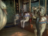 Old Carousel Horses and Duck, Paris, France - Tamarra Richards