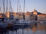 Sailboats in Port by Buildings, Marseille, France - Tamarra Richards